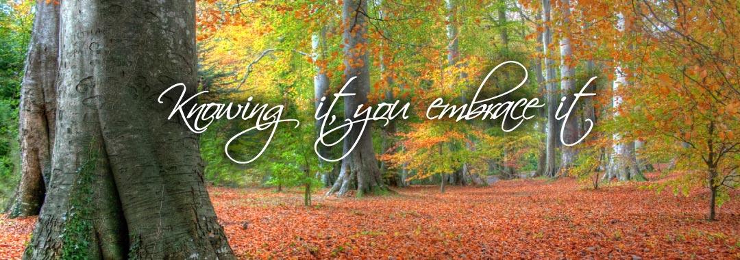 Mindfulness-Matters-knowing-it-you-embrace-it